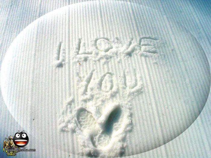 بالصور انت في قلبي , صور قلوب روعه 5784 17