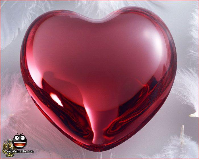 بالصور انت في قلبي , صور قلوب روعه 5784 20