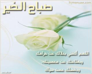 بالصور صباح نور , خلفيات صباح الخير 5789 3