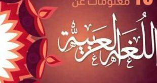 صوره معلومات عن اللغه العربيه , كل ما يخص اللغه العربيه