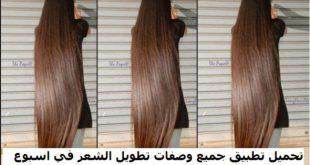بالصور طرق تطويل الشعر , كيف اطول شعري 5922 2 310x165