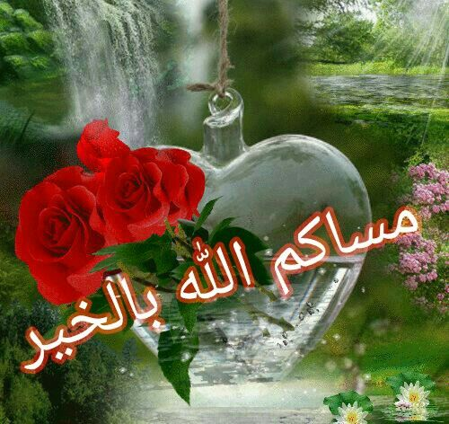 بالصور اجمل صور مساء الخير , اجمل مسي علي الحبايب من القلب 6530 5