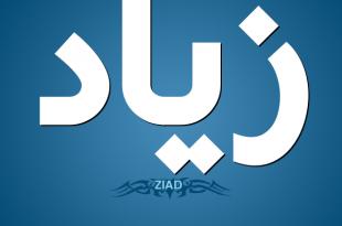 صور معنى اسم زياد , اسم زياد الرائع ومعناه