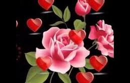 صوره مساء الورد شعر , اجمل صور مساء الورد