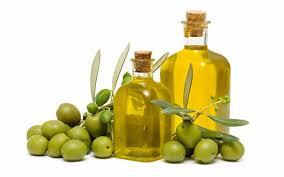 بالصور زيت الزيتون للشعر , فوائد زيت الزيتون 1357 2