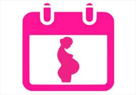 بالصور حاسبة الحمل بالاشهر , كل ما يخص حامله الحمل بالاشهر 1492 2