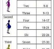 صوره حاسبة الحمل بالاشهر , كل ما يخص حامله الحمل بالاشهر