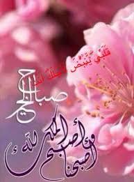 صورة اجمل صور صباح الخير , صباح الخير والجمال
