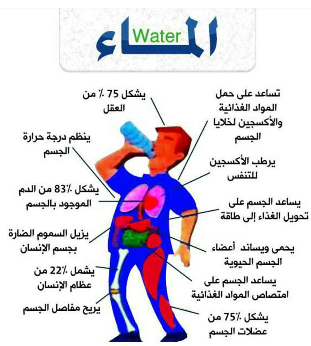 بالصور رجيم الماء فقط , تعرف على رجيم الماء فقط 2365