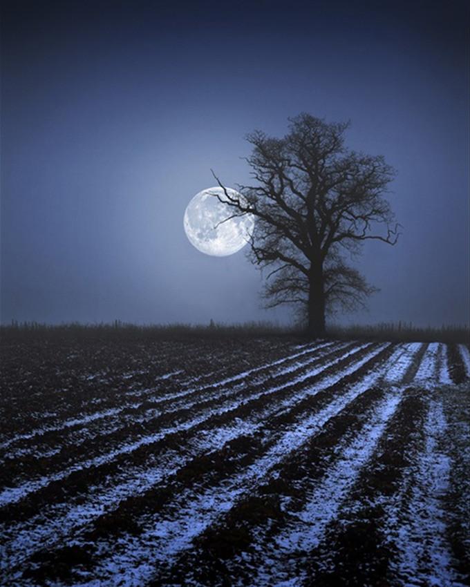 بالصور صور للقمر , اجمل صور القمر 2521 7