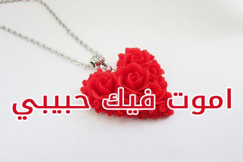 بالصور صور حبيبي , اجمل صور حبيبي و روعتها 2532 4