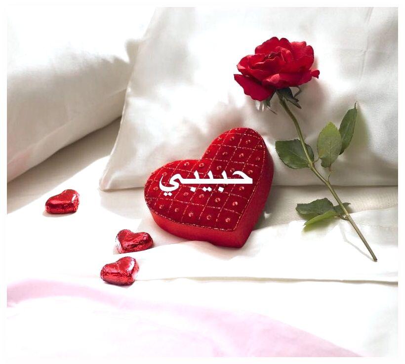 بالصور صور حبيبي , اجمل صور حبيبي و روعتها 2532 9