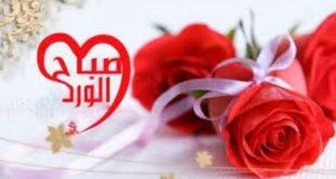صورة صباح الحب حبيبي , اجمل نسمات صباح الحب حبيبي