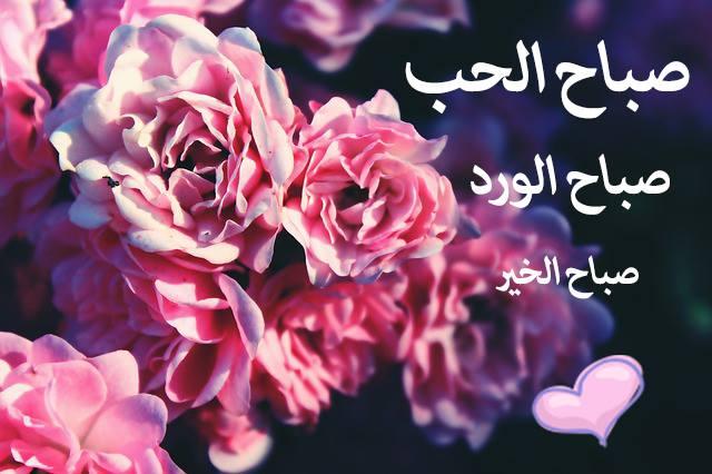 بالصور صباح الحب حبيبي , اجمل نسمات صباح الحب حبيبي 2656 7