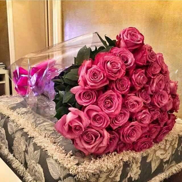 بالصور صور ورد جميل , انواع الورد وجماله 2657 2