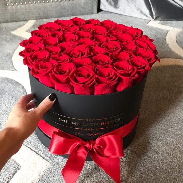 بالصور صور ورد جميل , انواع الورد وجماله 2657 5
