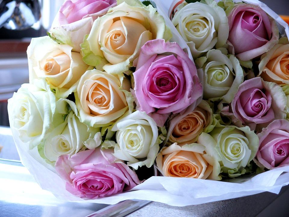 بالصور صور ورد جميل , انواع الورد وجماله 2657 7