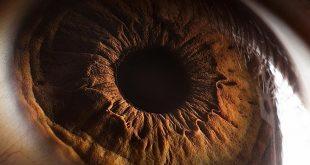 صور صور العين , عيون جميلة وجزابة