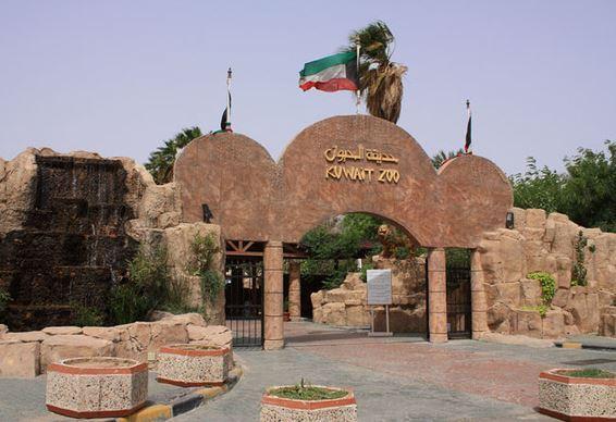 صورة الاماكن السياحية في الكويت , اجمل اماكن يمكن زيارتها في مدينة الكويت 3860 2