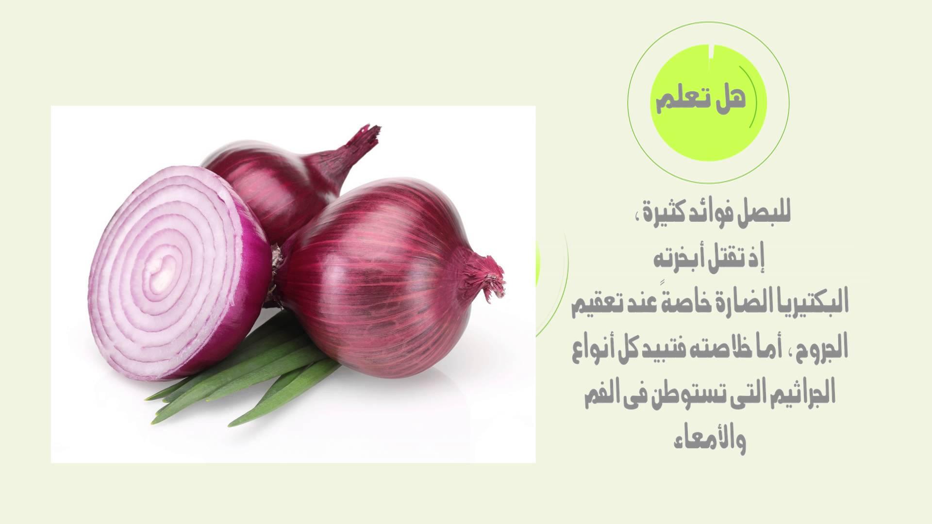 صوره فوائد البصل , تعرفى على فوائد البصل
