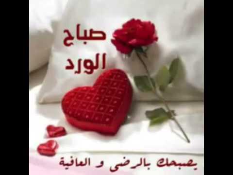 صورة رسائل صباحية رومانسية , اجمل رسالة تهديها لحبيب فى الصباح 5592 8