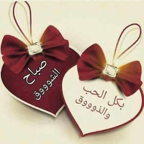 صورة رسائل صباحية رومانسية , اجمل رسالة تهديها لحبيب فى الصباح 5592