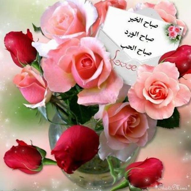 صورة احلى صباح للحبيب , اجمل الكلمات الصباحيه كلها رومانسيه للحبيب