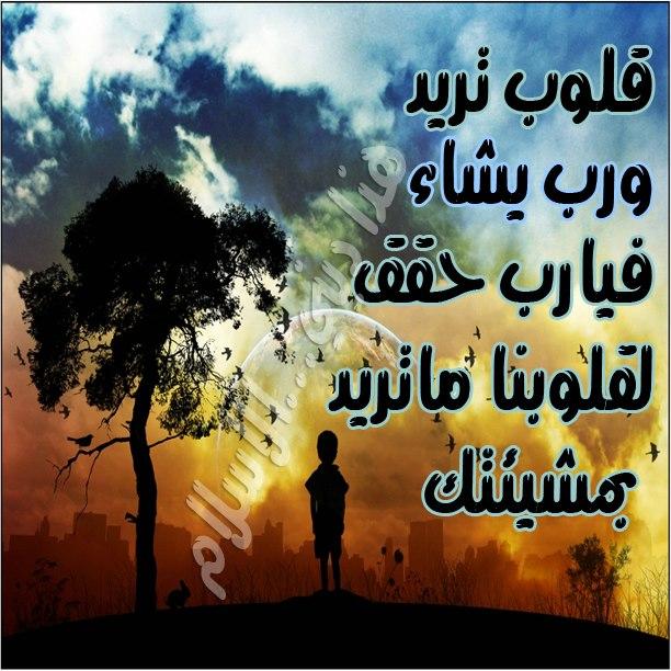 بالصور اجمل الصور الدينية , مجموعه من الصور الاسلاميه الرائعه 6266 8