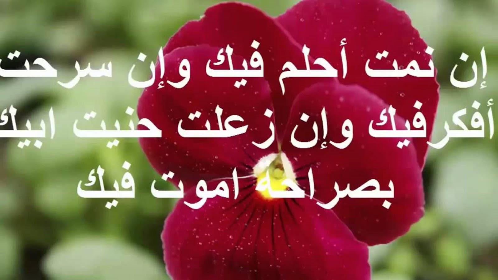 صورة صور رسائل حب , مين وين هالكلام الحلو مره 1276