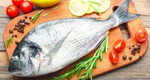 بالصور فوائد السمك , فوائد للسمك ستعرفها لاول مرة 468 3 310x165