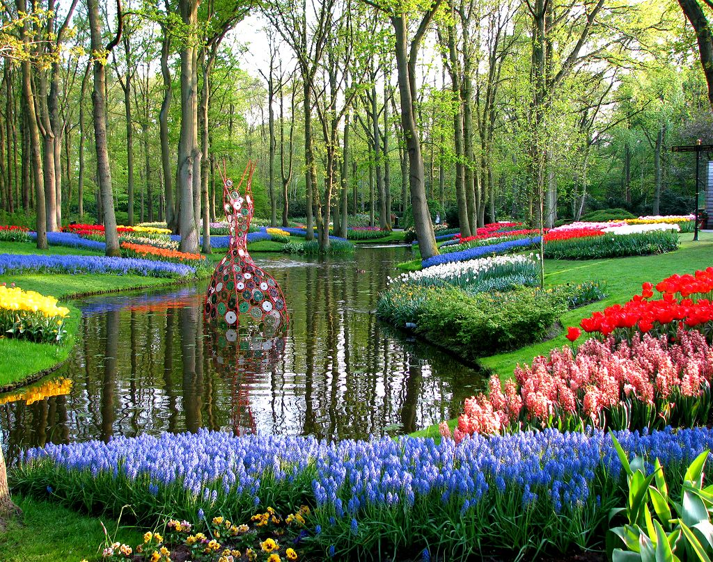 بالصور صور فصل الربيع , اجمل الفصول هو فصل تفتح الزهور 4779 3