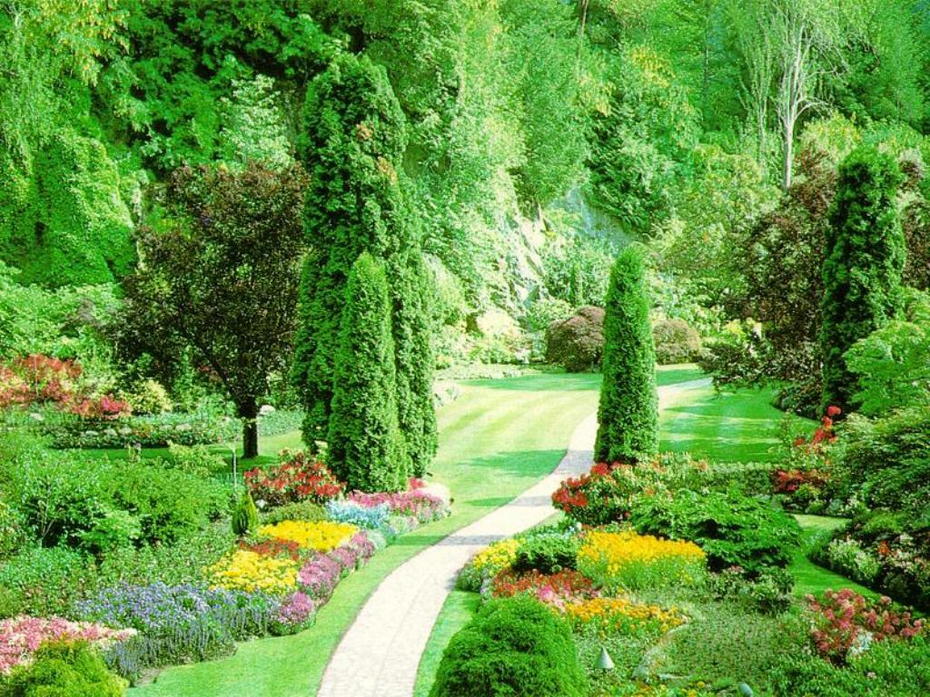 بالصور صور فصل الربيع , اجمل الفصول هو فصل تفتح الزهور 4779 4