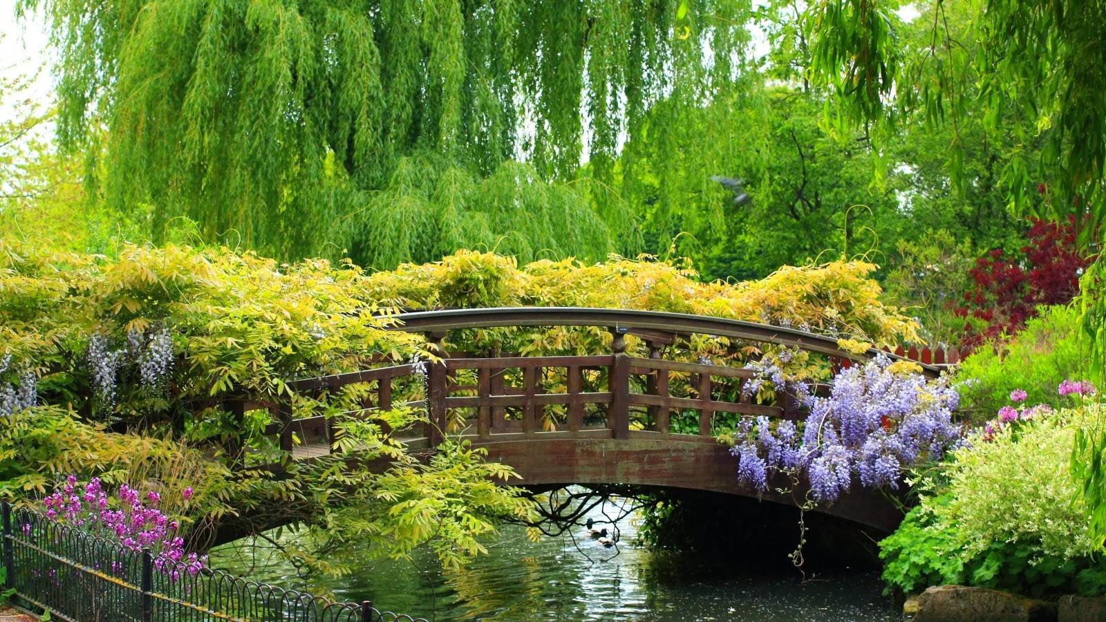 بالصور صور فصل الربيع , اجمل الفصول هو فصل تفتح الزهور 4779 5
