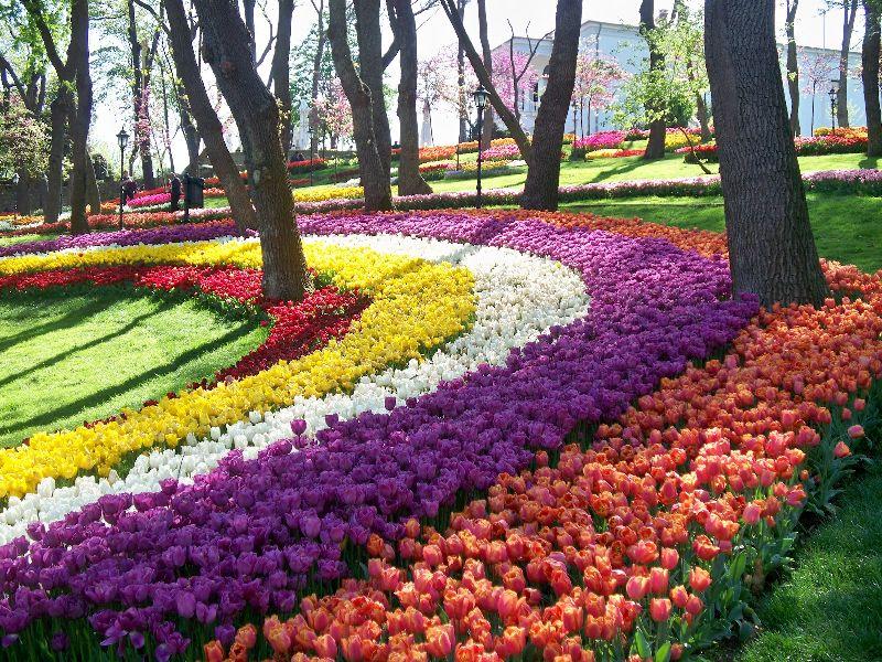 بالصور صور فصل الربيع , اجمل الفصول هو فصل تفتح الزهور 4779 9