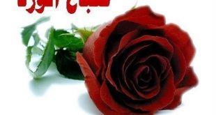 صورة ورد صباح الخير , اجمل صباح ببهجه اروع الورود