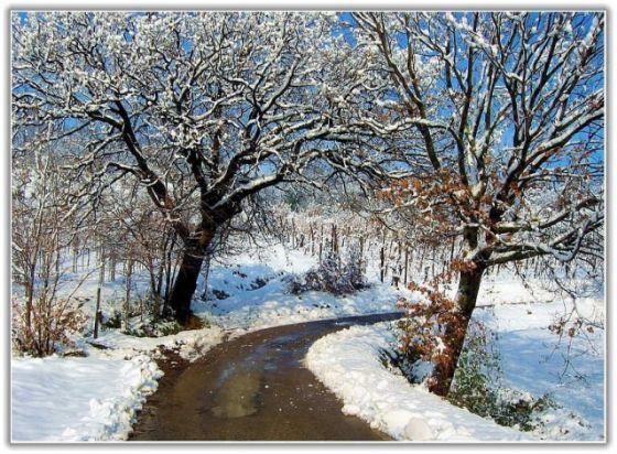 بالصور رسم منظر طبيعي باليد , اظهر موهبتك برسم اجمل لوحات المناظر الطبيعيه 4843 6
