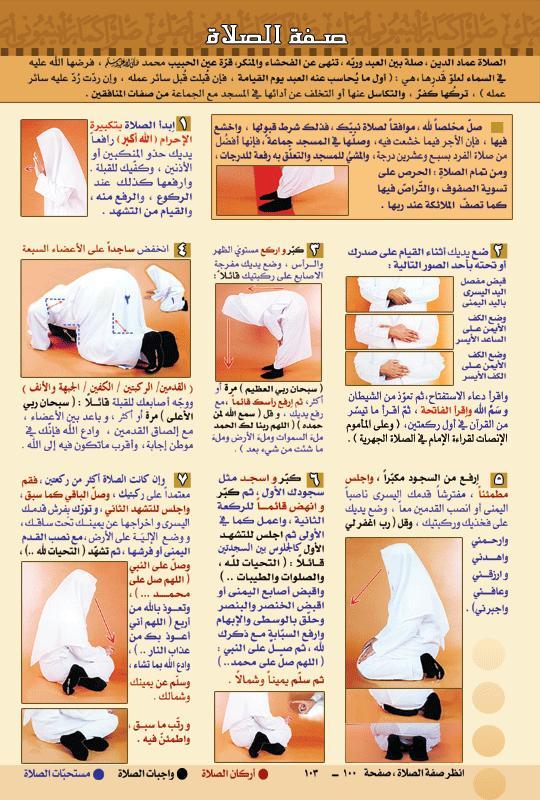 بالصور طريقة الصلاة الصحيحة بالصور , تجنب الاخطاء الشائعه في الصلاه 670 1