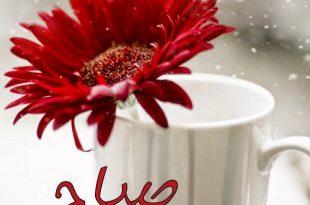 بالصور صور فيس بوك صباح الخير ومساء الخير , خلفيات فيس بوك مكتوب عليها عبارات مساء الخير وصباح الخير 3450 11 310x205