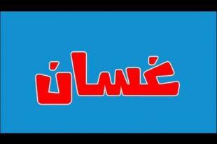 بالصور معنى اسم غسان , معانى الاسماء 5073 1 310x205