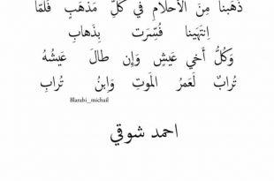 صورة شعر احمد شوقي , اشعار من الزمن الجميل