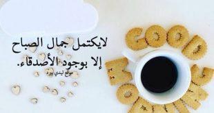 صورة كلمات الصباح للاصدقاء , صباح الخير يا صاحبي