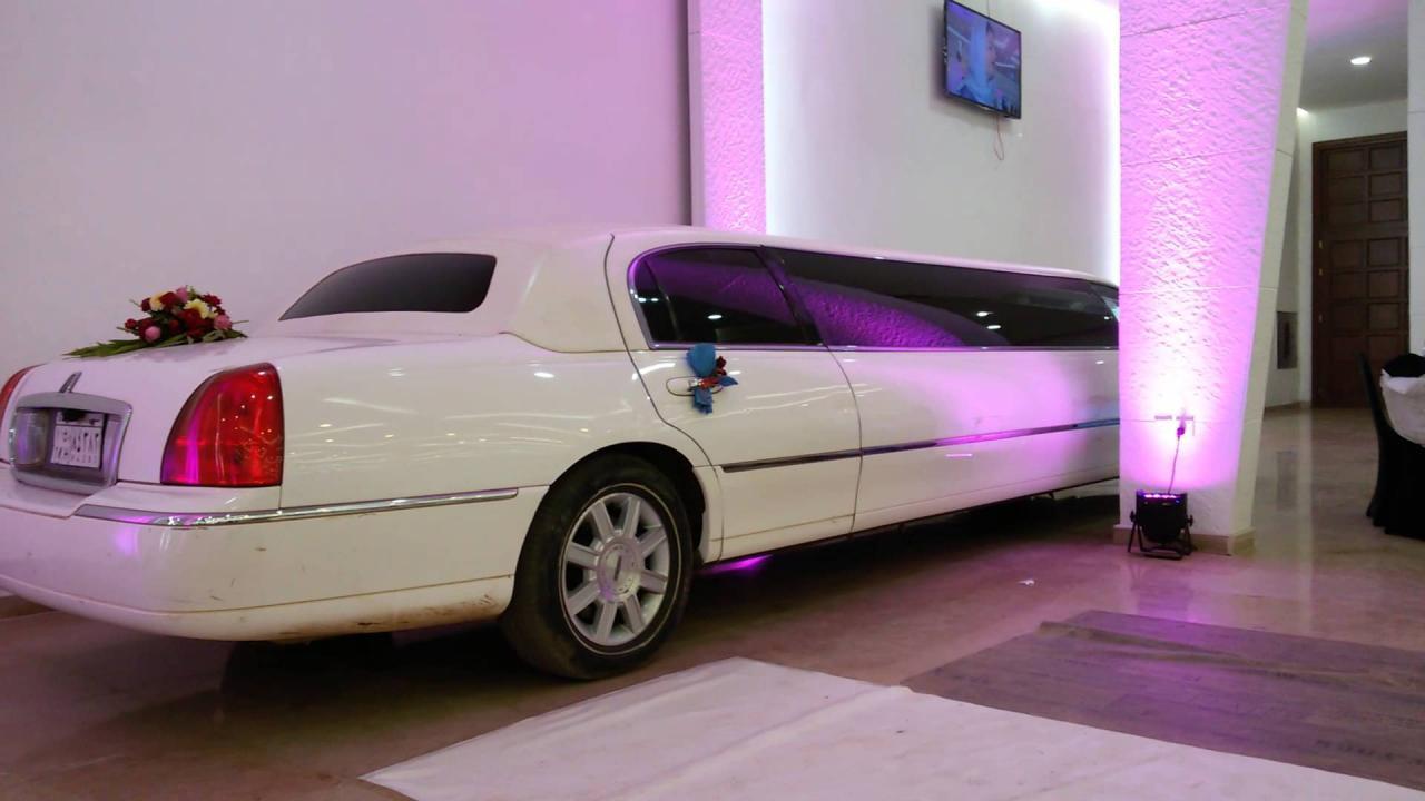 صورة اكبر سيارة في العالم 2148 5