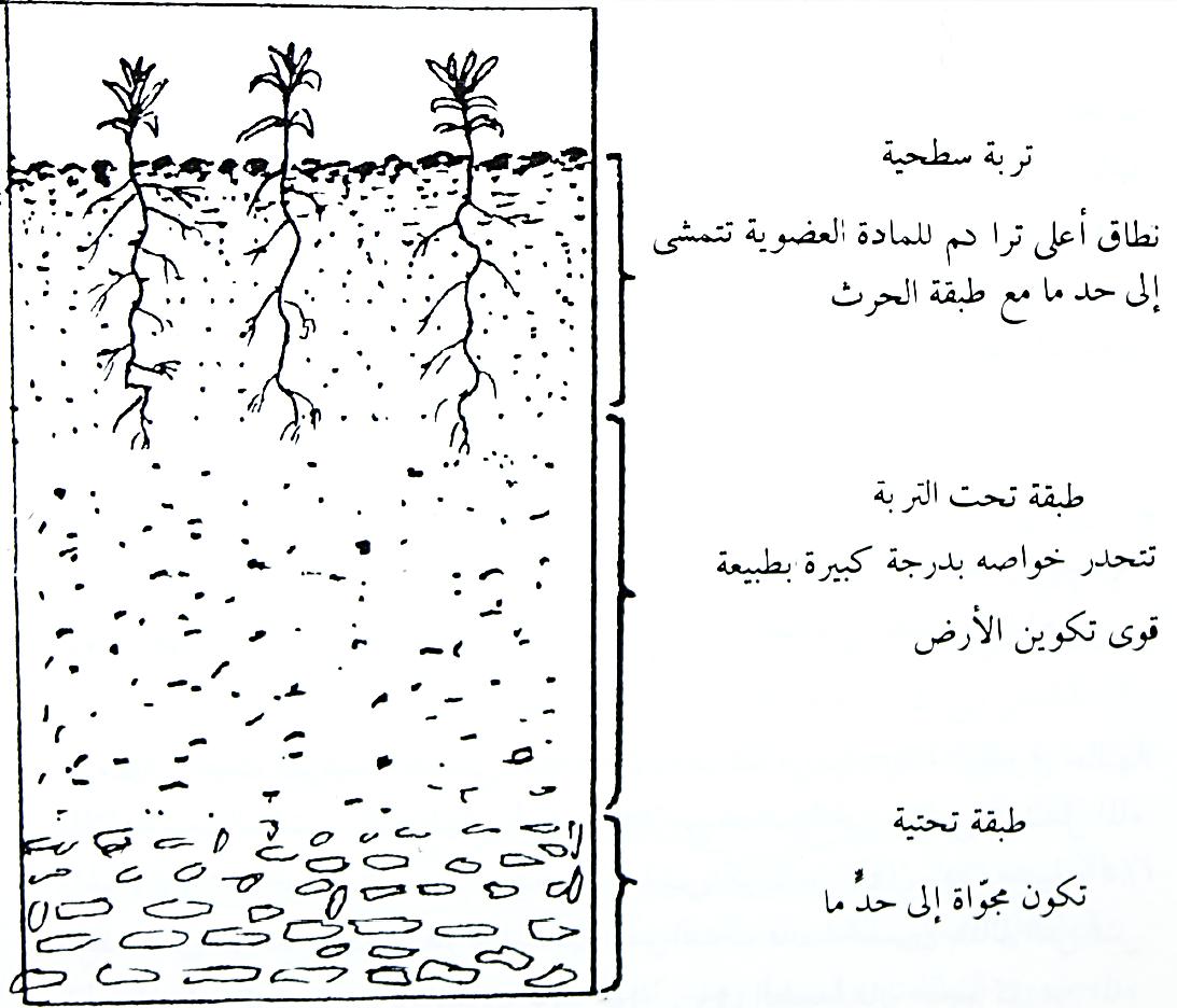 مكونات التربة بنات كيوت